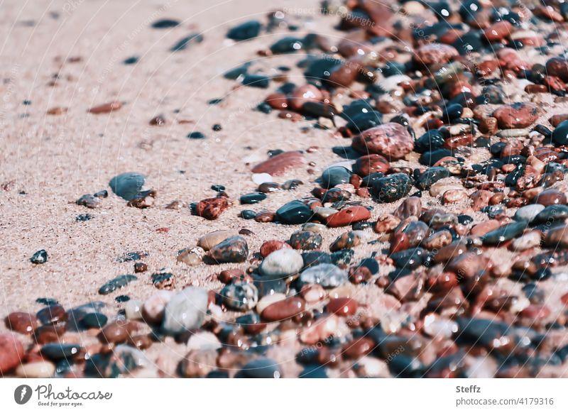 Stones on the Baltic Sea beach in spring light Baltic beach stones Pebble beach beach sand Stones on the beach Baltic Sea holiday coloured stones Beach