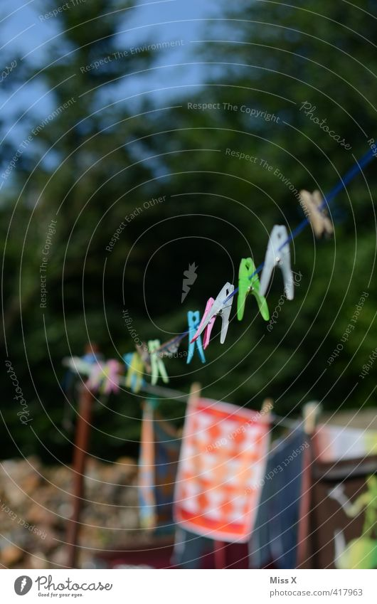 washing day Living or residing Garden Summer Beautiful weather Clothing Hang Wet Dry Diligent Orderliness Cleanliness Purity Washing Clothesline Clothes peg Row