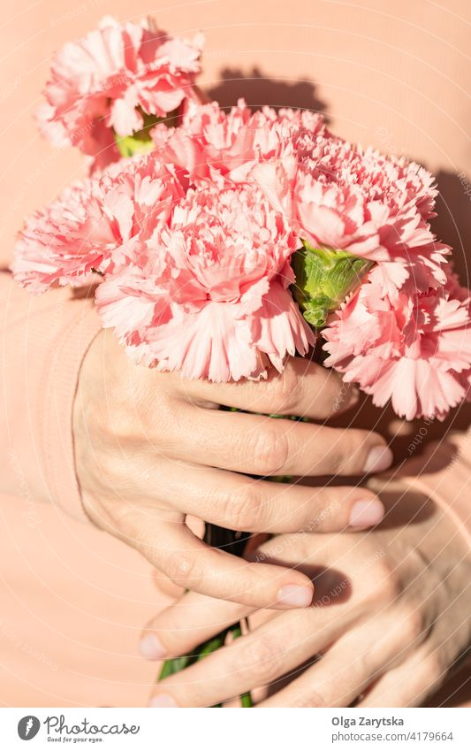 Woman's hands holding a bouquet of carnations. flower pink female woman white pastel holiday present mothers day bunch close up midsection finger natural