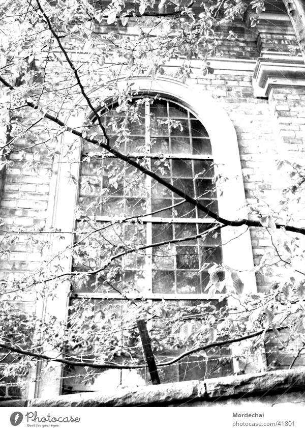 window Window Nostalgia Light and shadow Eerie Church window House of worship Religion and faith Black & white photo