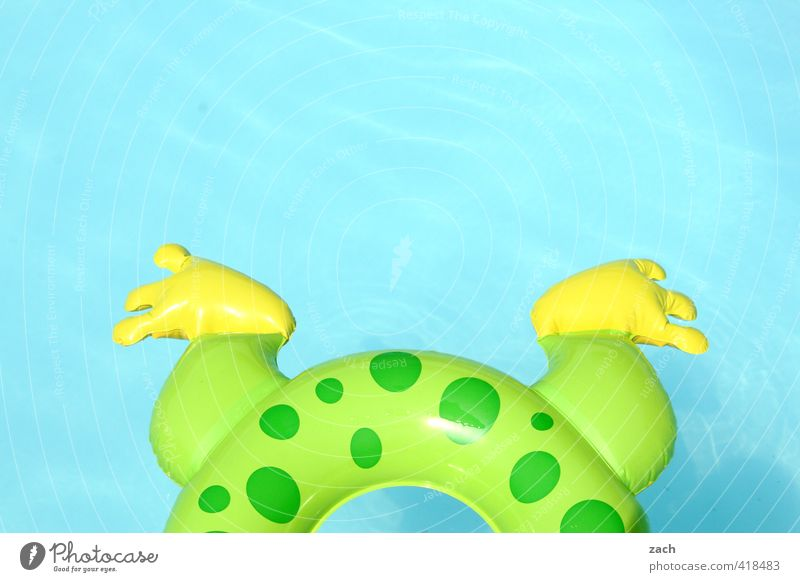 frog's leg Joy Swimming & Bathing Playing Vacation & Travel Aquatics Legs Feet Water Frog Squeak duck Relaxation Dive Round Blue Green Infancy