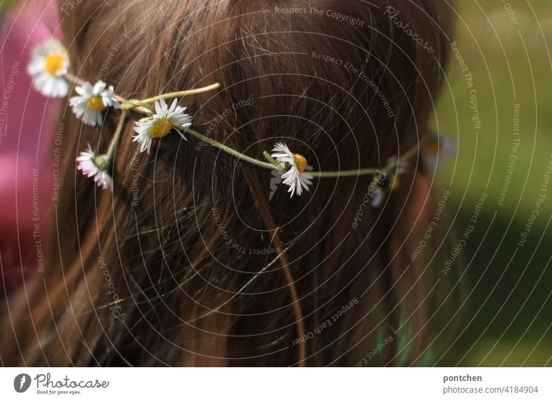 a flower wreath on children's hair. natural hair decoration. daisies wreath of hair flowers Blossom naturally Back of the head Hair accessories Wedding