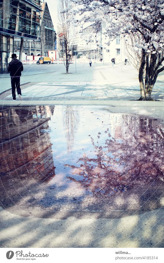 Spring in the city downtown Almond tree reflection Puddle Marketplace Places Glas facade Roadsweeper Passers-by people Blossoming spring blossoms City Spring