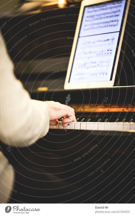 Pianist practicing on his instrument Piano Practice Playing diligence Ipad Leisure and hobbies Musician Artist Fingers Concert