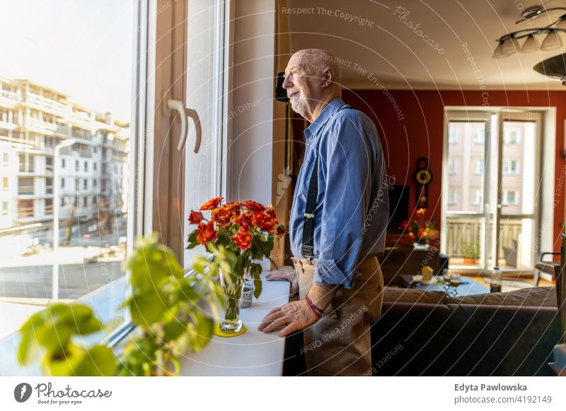 Senior Man Looking Through Window at Home real people candid genuine senior mature male man Caucasian elderly home house old aging domestic life grandfather