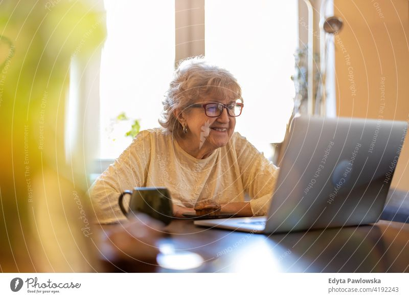Happy senior woman using laptop at home real people candid genuine mature female Caucasian elderly house old aging domestic life grandmother pensioner