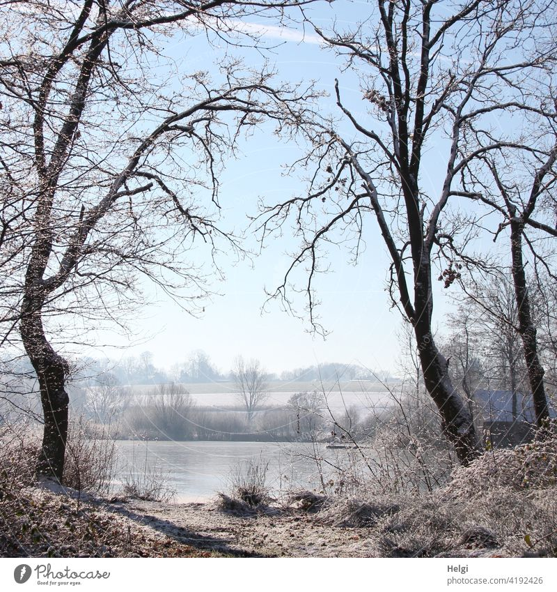 Winter atmosphere - two trees form a gate to the frozen lake through their branches Tree Lake Moor lake Hücker Moor Winter mood Winter morning Frost chill