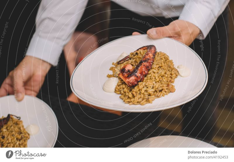 A delicious gourmet plate of rice with octopus tentacle in a luxury maritime European restaurant Octopus food paella cuisine dish cooked meal seafood cooking