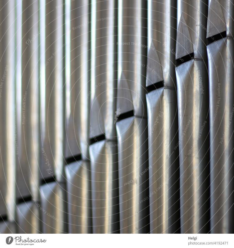 Scale - close up of organ pipes Organ Organ Pipes Church Music tones Musical instrument Colour photo Interior shot Close-up Make music Detail Sound Concert Gray