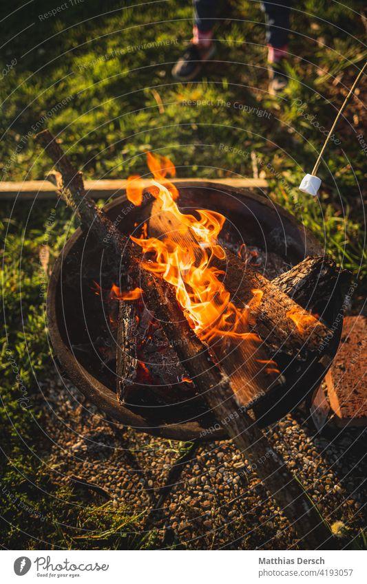 Bread on a stick at the campfire stumblebum Fire Camp fire atmosphere Fireplace fire bowl campfire romanticism children Adventure Summer night