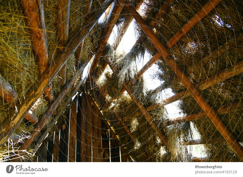 Wind-destroyed dwelling of a Celtic settlement Roof roof truss habitation camp Camping Celts Wood Wooden house Recreated Straw Hay windy unstable corrupted