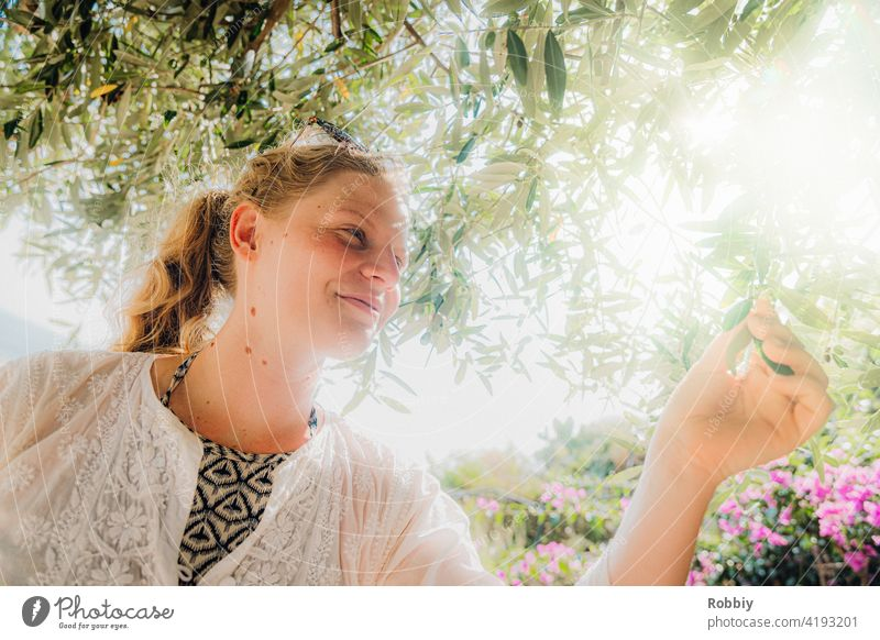 Young woman under olive tree in sunshine Olive tree Blonde Sun Sunlight Tree Back-light portrait Smiling pretty vacation Summer Summer Feeling Exterior shot