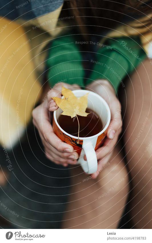 Warm tea. Autumn Autumn Heather Tea warm drink hot tea tea mug autumn mood Autumn leaves Autumnal weather autumn colours autumn light Autumn wind