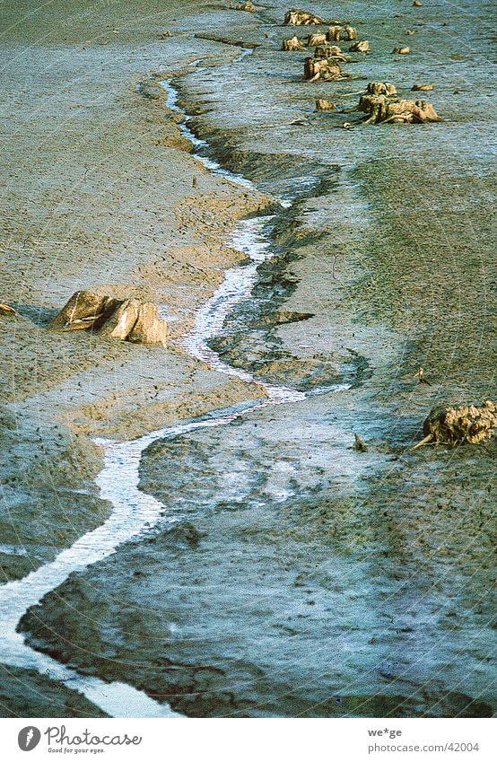 rivulet Brook Source Water Landscape
