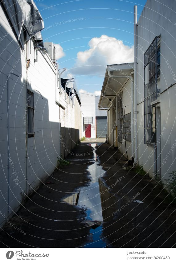 unassuming cul-de-sac Alley Narrow Puddle Lanes & trails Clouds in the sky Reflection Shadow Authentic Sunlight Gloomy Cairns Australia Vanishing point