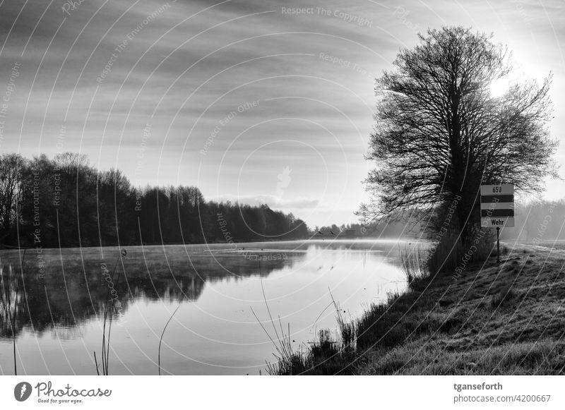 On the Ems in the morning Water Morning morning mood Dawn Morning fog Landscape Deserted Calm Exterior shot Romance Nature Emsland Sadness Idyll Moody River
