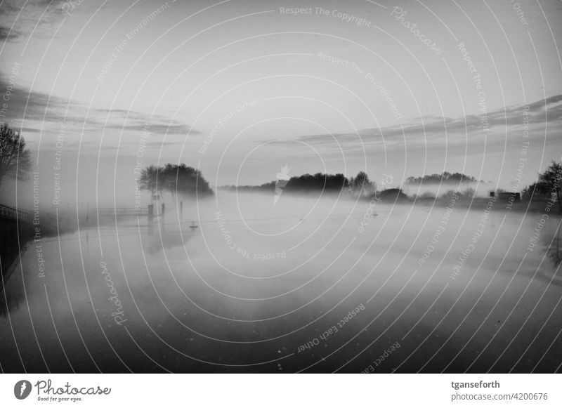 Fog on the Ems in the morning Water Morning morning mood Dawn Morning fog Landscape Deserted Calm Exterior shot Romance Nature Emsland Sadness Idyll Moody River