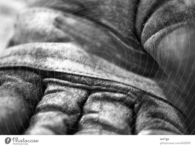 work gloves Work gloves Gloves Tool Things Black & white photo