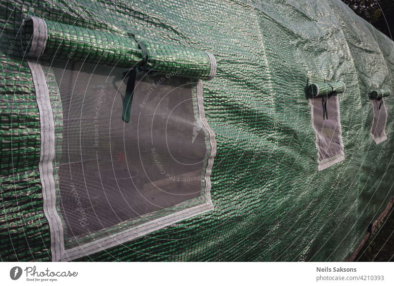 Polythene tunnel as a plastic greenhouse in an allotment with growing vegetables in garden agriculture arc arch architecture botany building community
