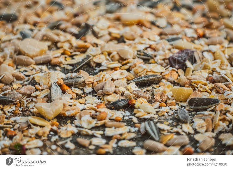 Bird food for the winter Birdseed Winter Autumn Forest Garden Close-up grains Feed macro Nature Exterior shot Colour photo Day Deserted Feeding Feeding area