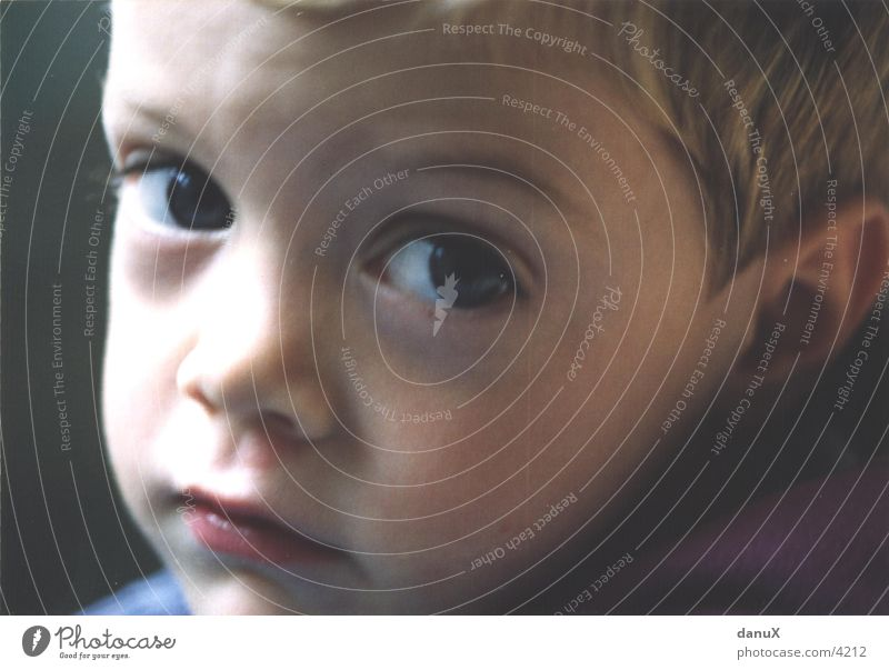 Human being Child Face Eyes Boy (child) Sadness Grief Facial expression