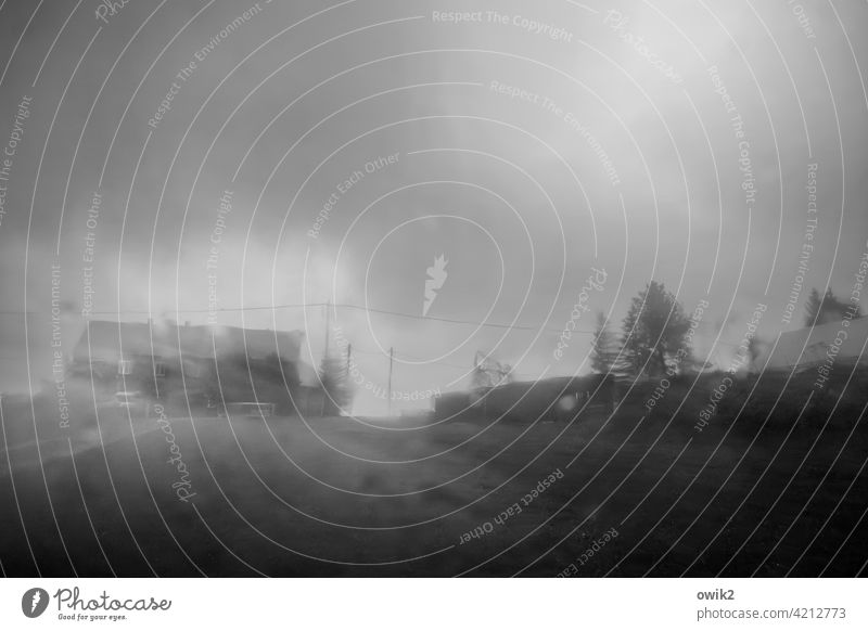 Like from cans Rain Bad weather Wet Car window somber Horizon House (Residential Structure) hazy Tree Meadow Clouds Raincloud Covered Black & white photo
