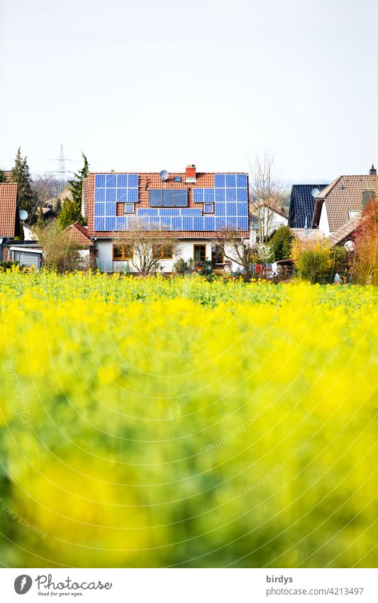 Photovoltaic system and thermal solar system on the roof of a single-family house on the outskirts of town with an adjacent rapeseed field local border