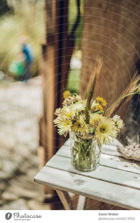 Bouquet in vase Flower Blossom Plant Nature Green Blossoming Colour photo Deserted Leaf Day