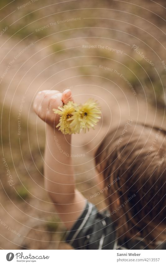 Child with flowers in hand Nature Flower Plant Blossom Garden Colour photo pretty Blossoming Exterior shot Yellow Environment raised a hand Arm