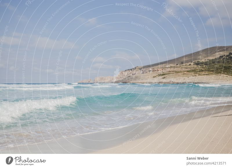 Cala Mesquida beach in Mallorca Beach coast Ocean Water Sand Waves Sky Lake Nature Blue Relaxation Vacation & Travel Horizon Landscape Exterior shot Deserted