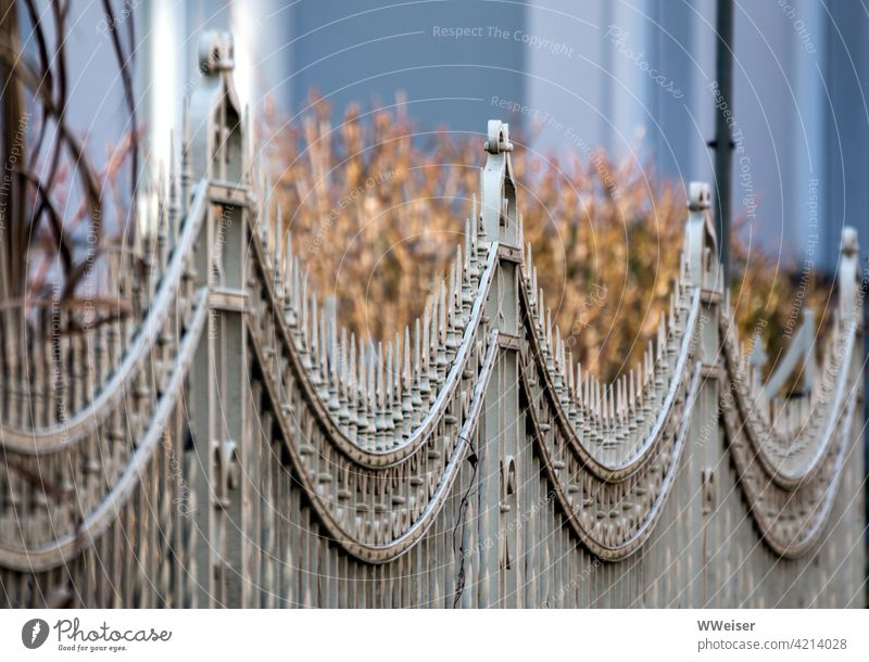 Neighbourhood: scrub behind artfully curved fence Fence peak curves undergrowth Dry Front garden neighbourhood Metal plants Garden wax repulse sb./sth.