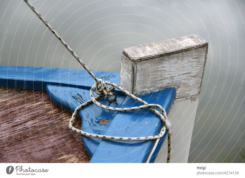 back to the roots | bow of an old small fishing boat on the water, detail view Fishing boat Detail leash String Water Wood Old Small Close-up Knot tethered