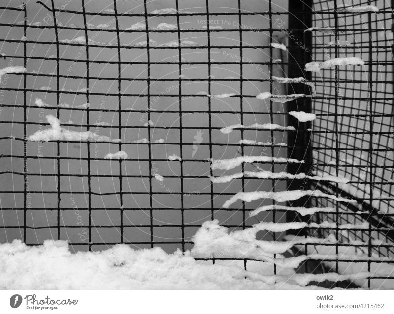 cool box Detail Fence Metal lattice fence Wire netting Grating Snow Vista Protection Safety Winter Deserted Barrier Exterior shot Structures and shapes Pattern