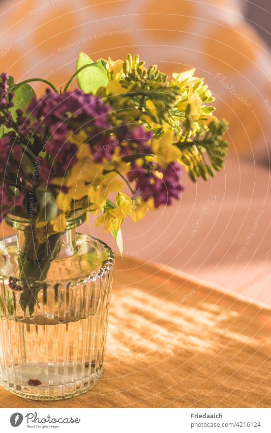 Detail shot of glass vase with yellow and purple flower and blurred background Flower vase flowers Decoration Shallow depth of field Yellow colourful