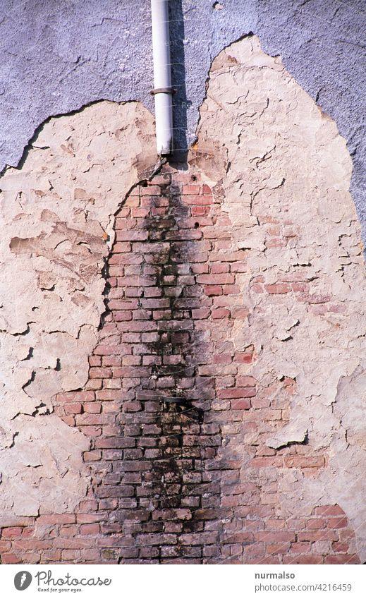 Bauschäden Wand schaden wasser altbau schimmel sanierung putz ziegel verwittert regen regenrohr abriss ruine