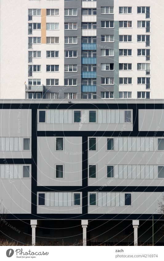 Life in boxes Pattern Loneliness Gray Window Concrete Line Living or residing Facade Wall (building) Wall (barrier) Architecture Manmade structures Deserted