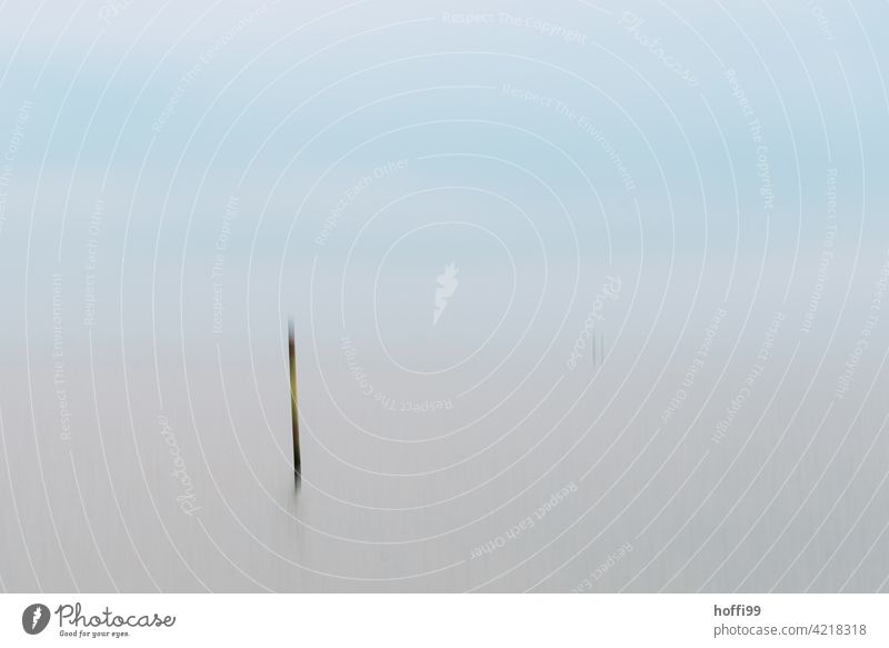 blurred boundary post in the Wadden Sea Mud flats Abstract surreal blurriness stake Boundary post Calm tranquil setting ebb and flow Low tide Water High tide