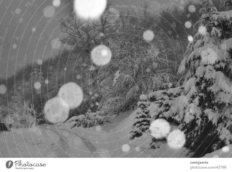 snow Winter Cold White Night Snowflake Smoothness Snow mud Ice NArut