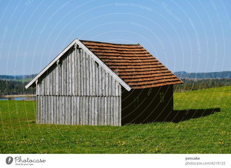 haus ohne hüter Gebäude Architektur nachhaltig natürlich einfach Himmel grau Holzbauweise Holzhütte Holzhaus Haus Landwirtschaft Wiese Allgäu