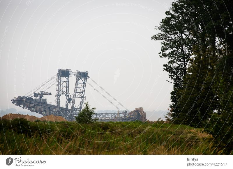Lignite excavator at Hambach Forest. The bucket-wheel excavator digs its way up to 50 metres to the edge of the forest Opencast mining Hambach