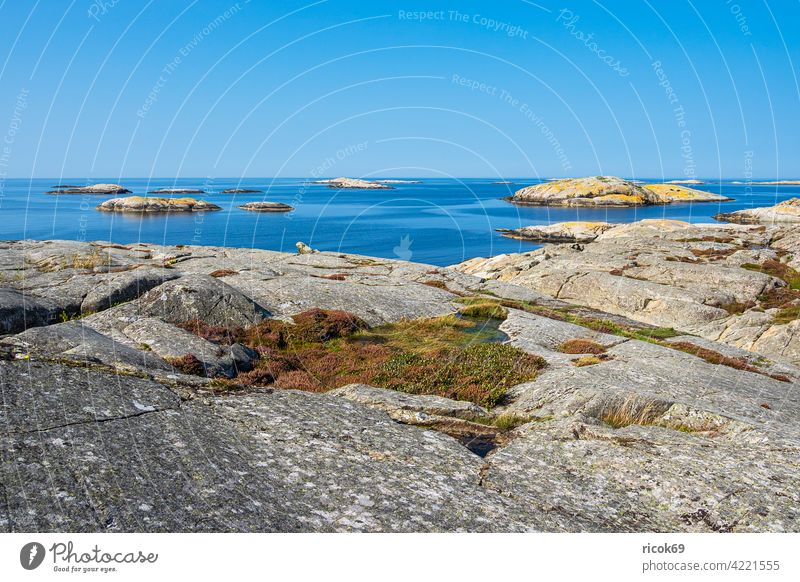 Rocks on the Weather Islands in front of the town of Fjällbacka in Sweden archipelago archipelago garden Ocean coast North Sea Skagerrak archipelago island