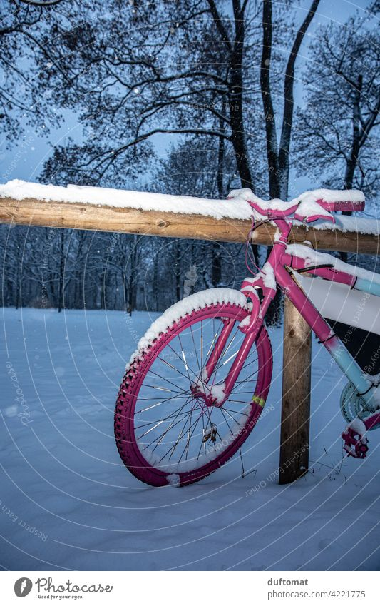 Pink bike in winter Bicycle Wheel Snow Winter Spokes Tire Exterior shot Means of transport Deserted Transport Metal Parking Cycling Mobility Movement