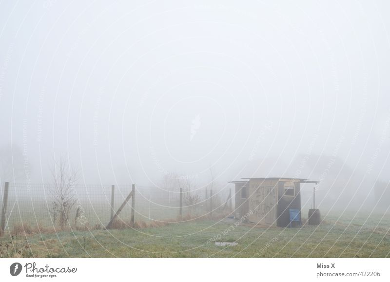 Howling little hut Weather Bad weather Fog Rain Garden Village Outskirts Deserted Hut Cold Wet Emotions Moody Loneliness Apocalyptic sentiment Decline