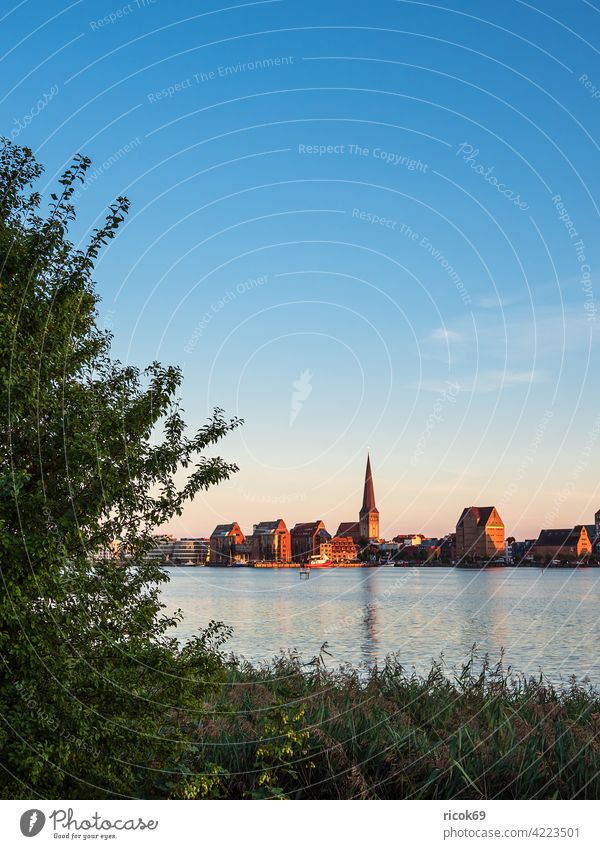 View over the Warnow to the Hanseatic city of Rostock Warnov River city harbour Mecklenburg-Western Pomerania Town reed Tree Tourism Architecture houses
