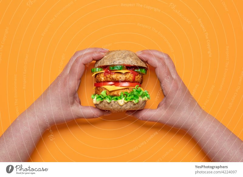 Veggie burger top view. Woman hands holding a vegan cheeseburger. above alternative awareness background bread color consumerism cuisine cut out delicious