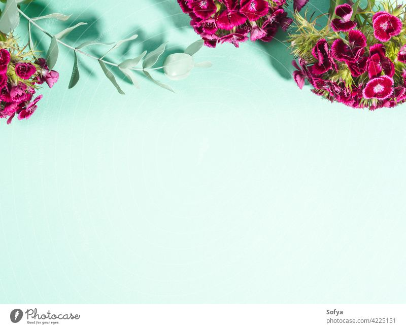 Pastel green turquoise background with pink flowers woman mockup valentine mother day easter womens day pastel floral design plant summer abstract color spring