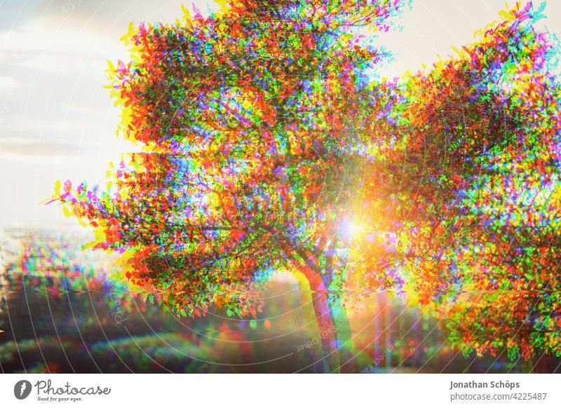 Tree in garden glitch effect Nature Landscape Exterior shot Deserted Environment Colour photo Environmental protection Sustainability Anaglyph Error variegated