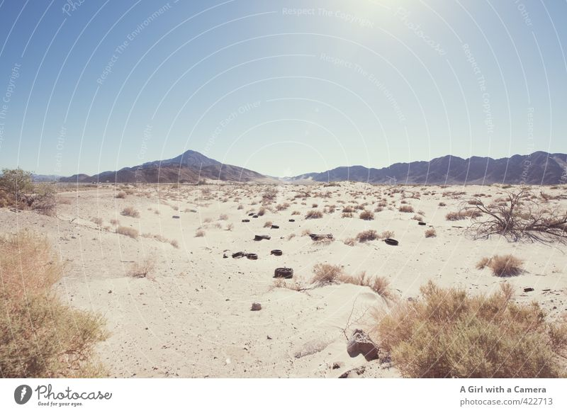 desert Environment Nature Landscape Plant Sand Sky Cloudless sky Sun Summer Warmth Drought Desert Far-off places Hot Dry Scrap metal Tire Subdued colour