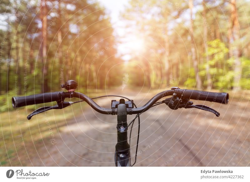 Bicycle in the autumn forest summer nature wild green outdoors wilderness plant tree day tranquility daytime getting away from it all outdoor pursuit freedom