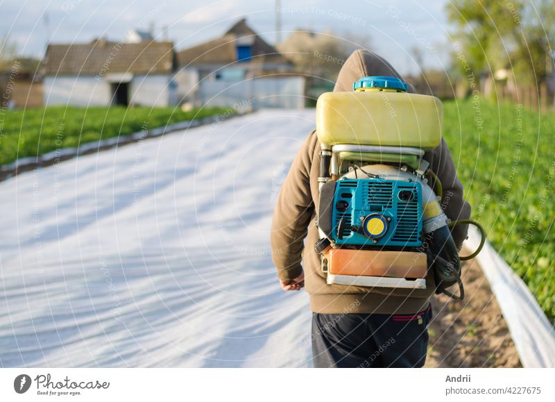 A farmer with a mist sprayer on his back walks through the farm field. Protection of cultivated plants from insects and fungal infections. The use of chemicals for crop protection in agriculture